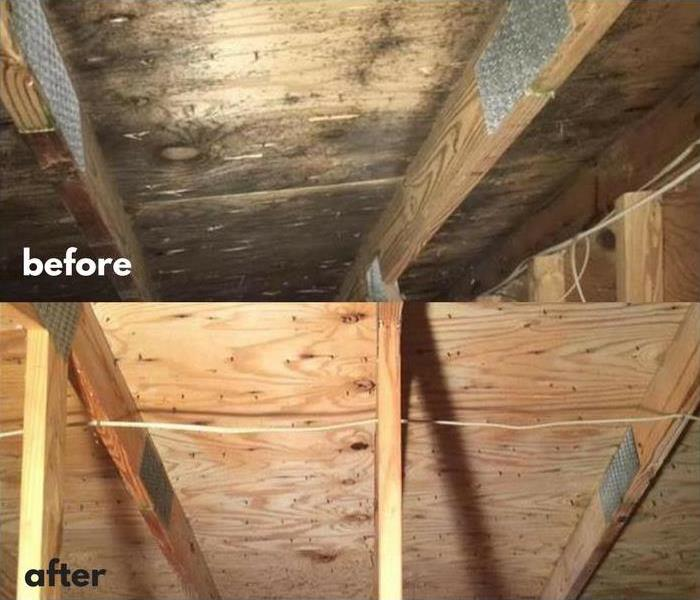 Mold Remediation Mold Remediation in a Lincoln Attic