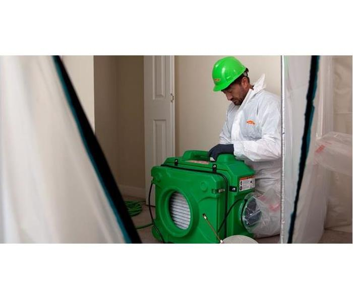 Mold Remediation Is It Mold or Mildew?