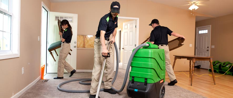 Lexington, MA cleaning services